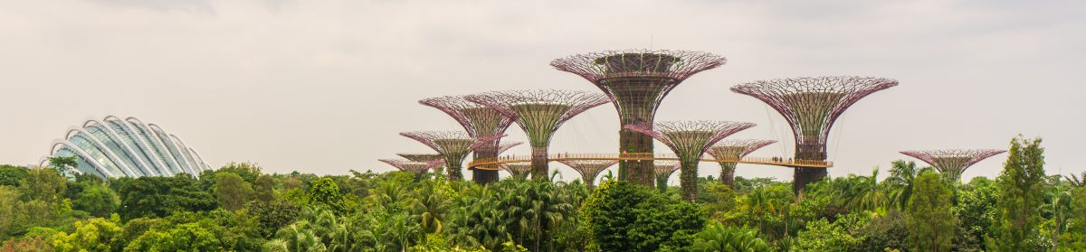 Markus in Singapur